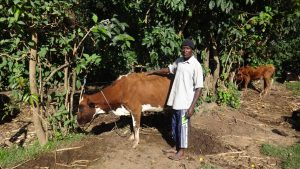 The Water Project:  Kevin Omondi With His Cow
