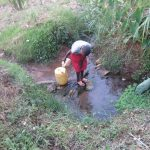 The Water Project: Ikonyero Community, Amkongo Spring -  Fetching Water