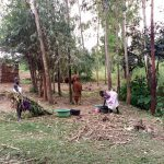 The Water Project: Buhayi Community, Nasichundukha Spring -  Working At Household