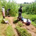 The Water Project: Hirumbi Community, Khalembi Spring -  Doing Laundry Nearby Spring