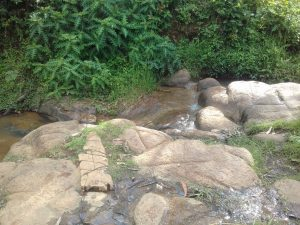 The Water Project:  Community River