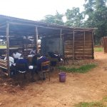 The Water Project: Ikumba Secondary School -  Students Learning Outside
