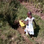 The Water Project: Mwichina Community, Shihunwa Spring -  Fetching Water