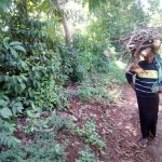 The Water Project: Hirumbi Community, Khalembi Spring -  Woman Carrying Firewood Home