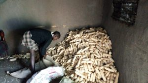 The Water Project:  Maize Used As Firewood