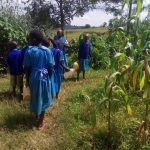The Water Project: Shichinji Primary School -  Students Going To Get More Water