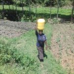 The Water Project: Mwichina Community, Shihunwa Spring -  Carrying Water