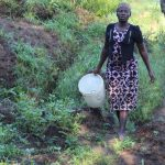 The Water Project: Bukhakunga Community, Mukomari Spring -  Coming To Fetch Water