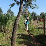 The Water Project: Bungaya Community, Charles Khainga Spring -  Carrying Water