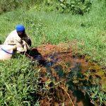 The Water Project: Mushina Community, Shikuku Spring -  Fetching Water At The Spring