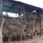 The Water Project: Maluvyu Community F -  Granary