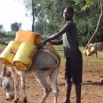 The Water Project: Kangalu Community -  Donkey Carrying Water