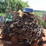 The Water Project: Maluvyu Community G -  Firewood