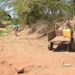 The Water Project: Kaukuswi Community A -  Donkey Hauls Water