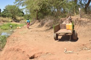The Water Project:  Donkey Hauls Water