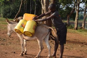 The Water Project:  Donkey Carries Water