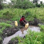 The Water Project: Nyakasenyi Byebega Community -  Collecting Water At The Open Source