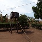 The Water Project: Kimigi Kyamatama Community -  Chicken Coop