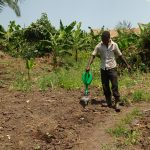 The Water Project: Rubana Yagilewo Community -  Watering Cabbage Garden
