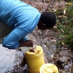 The Water Project: Bumira Community, Madegwa Spring -  Fetching Water