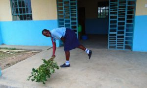 The Water Project:  Sweeping With A Tree Branch