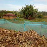 The Water Project: Irovo Orphanage Academy -  School Farm