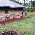 The Water Project: Kisasi Community, Edward Sabwa Spring -  Household