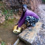 The Water Project: Bumira Community, Imbwaga Spring -  Fetching Water