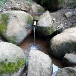 The Water Project: Chepnonochi Community, Shikati Spring -  The Current Water Source