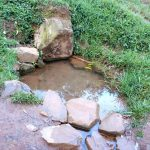 The Water Project: Bumira Community, Madegwa Spring -  Current Water Source