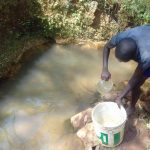 The Water Project: Lusiola Community, Ifetha Spring -  Fetching Water