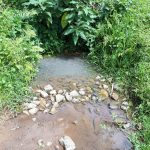 The Water Project: Buyangu Community, Osundwa Spring -  Current Water Source