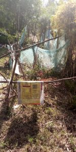 The Water Project:  Garden Fenced With Mosquito Nets
