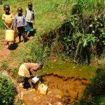 The Water Project: Ebutindi Community, Tondolo Spring -  Fetching Water