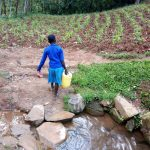 The Water Project: Bumira Community, Madegwa Spring -  Carrying Water