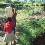 The Water Project: Lusiola Community, Ifetha Spring -  Carrying Water