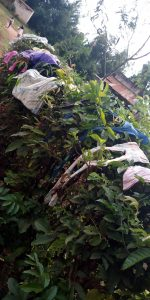 The Water Project:  Clothes Drying On The Bushes