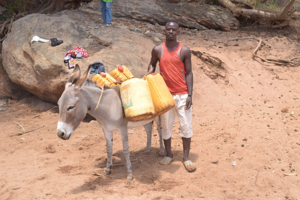 The Water Project : kenya19193-loading-donkey-with-water