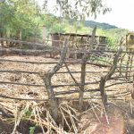 The Water Project: Kithumba Community D -  Livestock Pen