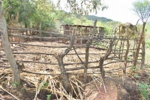 The Water Project:  Livestock Pen