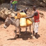 The Water Project: Kathonzweni Community A -  Donkey Carrying Water