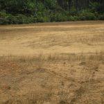 The Water Project: Lokomasama, Bompa, DEC Bompa Primary School -  School Playing Ground