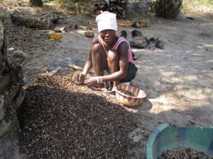 The Water Project:  Woman Processing Palm Karnel