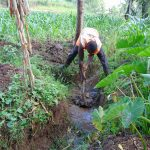 The Water Project: Bukhakunga Community, Mukomari Spring -  Digging Drainage For The Spring