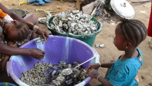 The Water Project:  Woman Processing Seashells