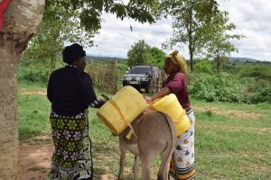 The Water Project:  Loading Water Onto Donkey