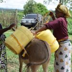 The Water Project: Kaketi Community A -  Loading Water Onto Donkey