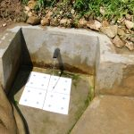 The Water Project: Sambuli Community, Nechesa Spring -  Water Flowing In June