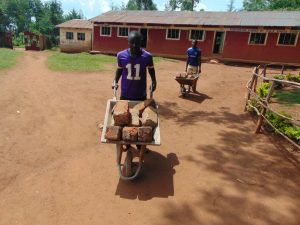 The Water Project:  Delivering Bricks