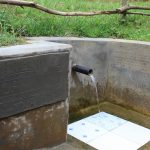 The Water Project: Wajumba Community, Wajumba Spring -  In Honor Of Samid